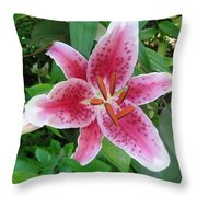 Passion Pink Throw Pillow