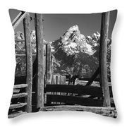 Past Its Time Throw Pillow