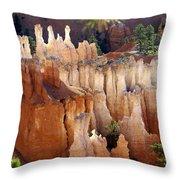 Pastel Bryce Throw Pillow