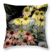 Pastel Cone Flowers Throw Pillow