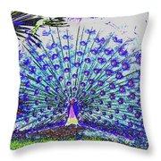 Pastel Peacock Throw Pillow
