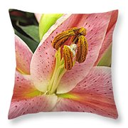 Pastel Pink Lily Throw Pillow