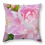 Pastel Pink Peonies Throw Pillow