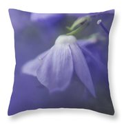 Pastel Shades Of Blue Throw Pillow