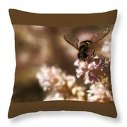 Pastels Delight Throw Pillow