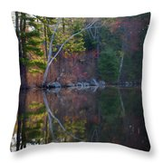 Pastels In Reflection  Throw Pillow