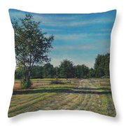 Pastoral Off Poplar Hill Road Throw Pillow