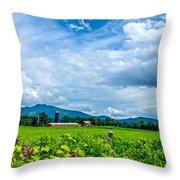 Pastoral Vermont Farmland Throw Pillow