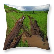 Pasture Throw Pillow