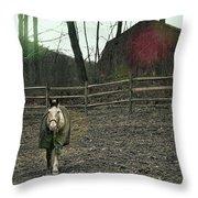 Pasture Pony Throw Pillow