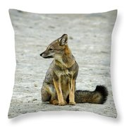 Patagonia Fox - Argentina Throw Pillow