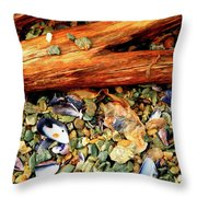 Patagonian Shore Throw Pillow