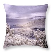 Patanemo Ir Throw Pillow