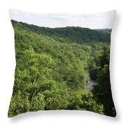Patapsco Valley State Park - Overlook Throw Pillow