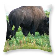 Patch Of Grass Throw Pillow