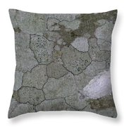 Patches Of Grey And Life Throw Pillow