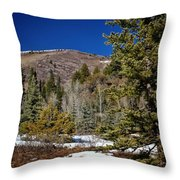 Patches Of Snow Throw Pillow