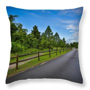 Path - Color Throw Pillow
