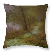 Path February 2017 Throw Pillow