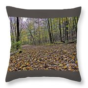Path Home - Kettle Moraine 10-14-16 Throw Pillow