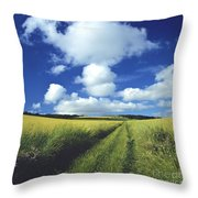 Path In A Countryside Throw Pillow