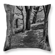 Path In Crownest Woods Throw Pillow