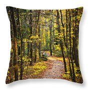 Path In Fall Forest Throw Pillow
