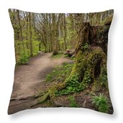Path In Judy Woods Throw Pillow