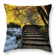 Path In Plitvice Throw Pillow