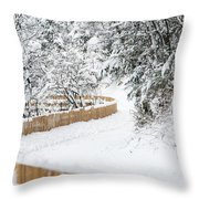 Path In Snow Throw Pillow