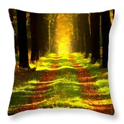 Path In The Forest 715 - Painting Throw Pillow