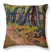 Path In The Garden Of The Asylum, By Vincent Van Gogh, 1889, Kro Throw Pillow