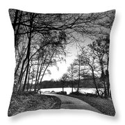 Path In The Park Throw Pillow
