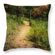 Path In The Prairie Throw Pillow
