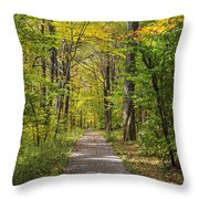 Path In The Woods During Fall Leaf Season Throw Pillow