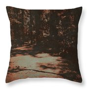 Path In The Woods Throw Pillow