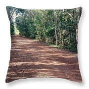 Path Into The Jungle Throw Pillow