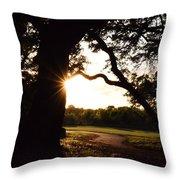 Path Into The Sun Throw Pillow