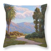 Path Into The Valley Throw Pillow