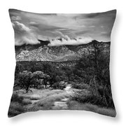 Path Of Contradiction Throw Pillow