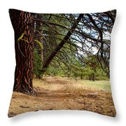 Path Of Enlightenment Throw Pillow