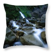 Path Of Least Resistance Throw Pillow