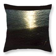 Path Of Sunlight Throw Pillow