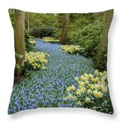 Path Of The Beautiful Spring Flowers Throw Pillow