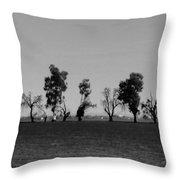 Path Of Trees On Farm Throw Pillow