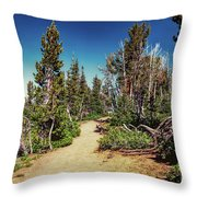 Path On Top Of Mt. Howard, Wallowa Or Throw Pillow