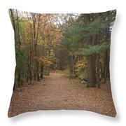 Path On Wilsons Mountain Throw Pillow