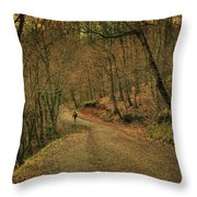 Path Throw Pillow
