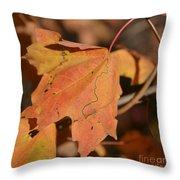 Path Through A Leaf Throw Pillow
