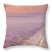Path Through Blooming Heather Near Hilversum, The Netherlands Throw Pillow